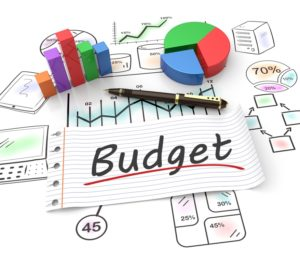 company budget